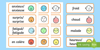 Cartes de vocabulaire : Les émotions, les sensations et les sentiments - Les émotions, les sensations, les sentiments, Emotions, Feelings, cartes, cards, ça va, ,French