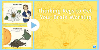 Plants Thinking Keys PowerPoint-Irish - science, plants, trees, thinking keys, thinkers keys, biology, critical thinking, questions, powerpo