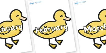 Months of the Year on Ducklings - Months of the Year, Months poster, Months display, display, poster, frieze, Months, month, January, February, March, April, May, June, July, August, September