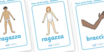 Parts of the Body Display Posters (Italian) - Eyes, nose, mouth, back, chest, tongue, ourselves, all about me, my body, senses, emotions, family, body, growth