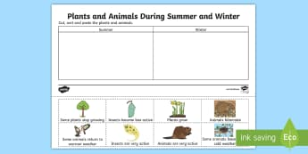 Plants and Animals During Summer and Winter Activity Sheet - migration, hibernate, hibernation, seasonal, Worksheet Keywords, animals behavior, animals and the w