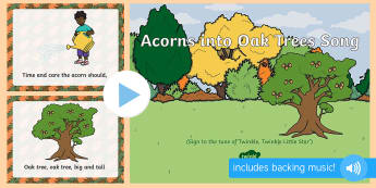 Acorns into Oak Trees Song PowerPoint - trees, plants and growth, Acorns, Oaks, singing, song time, woods, forest