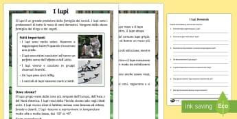 I Lupi Lettura Differenziata  - leggere, lettura, lupi, animali, domande, risposta, italian, italiano, comprensione