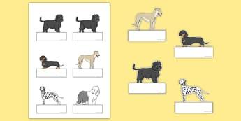 Dog Themed Editable Self Registration - Dame Lynley Dodd, hairy maclary, editable, self-registration