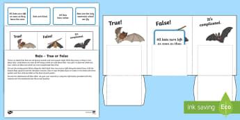 Bats   True or False Activity Sheet - Home Education Lapbooks, Bats, research, echolocation, worksheet