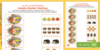 Autumn Themed Matching Activity Sheet Arabic/English - autumn, leaves,counting, maths, numeracy, worksheet, EAL, Arabic
