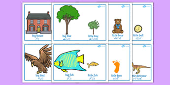 Big and Little Comparison Display Posters Urdu Translation - urdu, big and little, comparison, display, poster, sign, big, little, size, sizes, comparing, compare, small, big