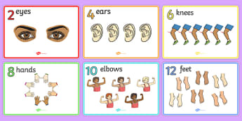 Body Parts Display Posters Counting in 2s - Body parts, counting in 2s, my body, nose, eyes, ears, mouth, arm, leg, finger, ourselves, all about me, my body, senses, emotions,
