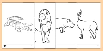 Crocodile Themed Colouring Sheets - The Selfish Crocodile, colour, fine motor skills, activity, rainy day, wet play, art, ks1, eyfs,