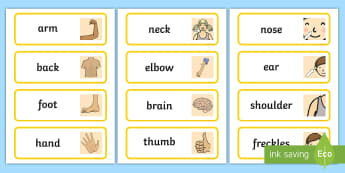 Parts of the Body Topic Word Cards - Body parts, my body, nose, eyes, ears, mouth, arm, leg, finger, ourselves, all about me, my body, senses, emotions, family, body, growth, parts od the body