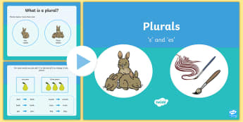 Plurals s and es Teaching PowerPoint -  single and plural, literacy, english, ppt, singular, s, es, plural, english
