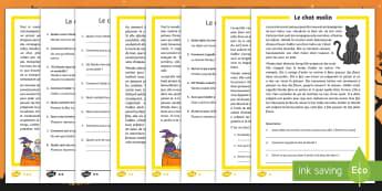 Compréhension écrite différenciée : Le chat malin - sorcière, Wenda, lecture, comprendre, questions, cycle 2,French