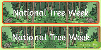 National Tree Week Display Banner - ROI- National Tree Week 5th - 12th March, trees, ireland, ash, oak, beech, sycamore, horse chestnut,