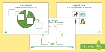 Frog Life Cycle Worksheets (Minibeasts) - Frogspawn, Tadpole, Froglet, Frog, Minibeasts, Topic, Foundation stage, knowledge and understanding of the world, investigation, living things, snail, bee, ladybird, butterfly, spider, caterpillar