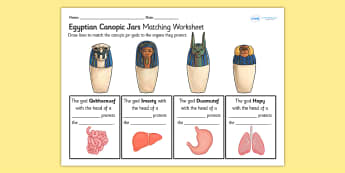 Canopic Jars Matching Organs Worksheet - canopic jars, canopic jars worksheet, ancient egypt, egyptian history, ks2 history worksheets, egyptian gods, ks2