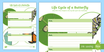 Life Cycle of a Butterfly Writing Frame Activity Sheet - ACSSU030, Animal reproduction, life stages, ACSSU072, caterpillar,Australia, worksheet