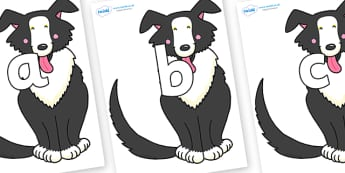 Phoneme Set on Hullabaloo Sheepdog to Support Teaching on Farmyard Hullabaloo - Phoneme set, phonemes, phoneme, Letters and Sounds, DfES, display, Phase 1, Phase 2, Phase 3, Phase 5, Foundation, Literacy