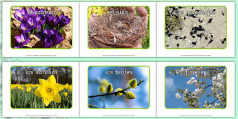 Fotos de exposición sobre la primavera - primavera
