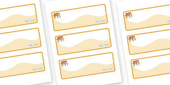 Tiger Themed Editable Drawer-Peg-Name Labels (Colourful) - Themed Classroom Label Templates, Resource Labels, Name Labels, Editable Labels, Drawer Labels, Coat Peg Labels, Peg Label, KS1 Labels, Foundation Labels, Foundation Stage Labels, Teaching La