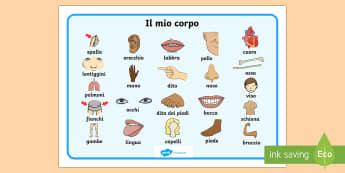 Il mio Corpo Vocabolario Illustrato - il, mio, corpo, vocabolario, illustrato, scienze, italiano, italian, materiale, scolastico
