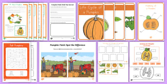 Life Cycle of a Pumpkin Activity Pack -  fall, autumn, growing pumpkins, Pumpkin activities, pumpkin worksheets, pumpkin printables, seasona