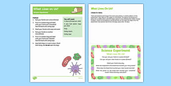 EYFS What Lives on Us? Science Experiment and Prompt Card Pack