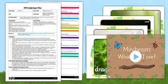 Minibeast Detectives EYFS Adult Input Plan and Resource Pack - EYFS, Early Years planning, adult led, insects, UtW, Understanding the World, forest school, forest schools, outdoor learning.