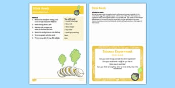 EYFS Stink Bomb Science Experiment and Prompt Card Pack