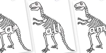 Foundation Stage 2 Keywords on Dinosaur Skeletons - FS2, CLL, keywords, Communication language and literacy,  Display, Key words, high frequency words, foundation stage literacy, DfES Letters and Sounds, Letters and Sounds, spelling