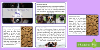 How to Care for Your Pet Dog Fact Cards - puppies, animal welfare, caring for pets, looking after pets, dogs, pooch, pooches, petcare, pet car