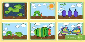 تسلسل القصة لدعم تدريس قصة اليرقة الجائعة جداً - اليرقة الجائعة ، اليسروع الجائع، قصة، تسلسل، عربي، بطا