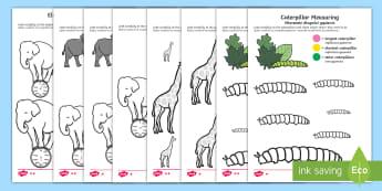 Colour by Size Activity Sheets English/Polish - measure, measuring, size, order, colour, largest, smallest, tallest, shortest, longest, heaviest, li