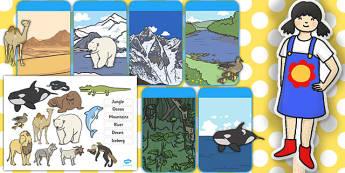 Jungle Animal Themed Habitats Resource Pack - pack