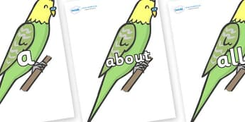 100 High Frequency Words on Budgies - High frequency words, hfw, DfES Letters and Sounds, Letters and Sounds, display words