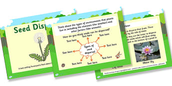 Life Cycles Seed Dispersal Task Setter - life cycles, seed dispersal, plant life cycles, flower life cycles, fruit life cycles, seed dispersal activities