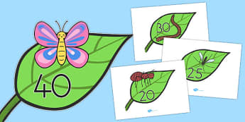 Numbers 20-40 on Minibeasts - australia, numbers, minibeasts