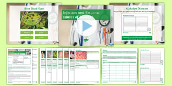 AQA Infection and Response Lesson 2: Causes of Diseases Lesson Pack - diseases, malaria, measles, Tobacco Mosaic, Salmonella, bacteria, virus, protist, fungus