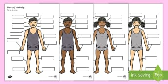 Body Parts Labelling Activity English/Portuguese - Body Parts Labelling Activity - body parts, labelling, activity, label, eal
