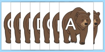 A-Z Alphabet on Bear - A-Z, A4, display, Alphabet frieze, Display letters, Letter posters, A-Z letters, Alphabet flashcards