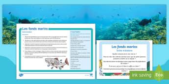 Pack de ressources : Scène miniature - Les fonds marins-French - KS1, cycle 2, cycle 1, fonds marins, mer, océan, poissons, coquillages, scène, jeu, ,French