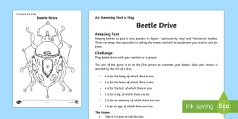 Beetle Drive Game