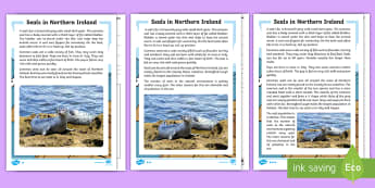 Seals in Northern Ireland Differentiated Comprehension Challenge Sheet - NI - Science Week 10/03/17, seals, Literacy comprehension, World Around Us, animals, sea, non-fictio