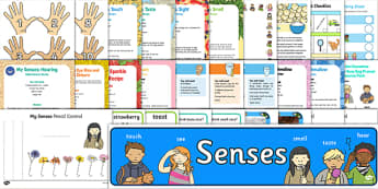 Childminder All About Me and Ourselves: My Senses Resource Pack