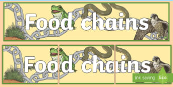 Food Chains Display Banner - food, chains, chain, eating, display, banner, sign, poster, good eating, healthy, snack, lunch