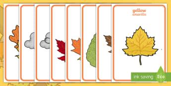 Autumn Display Posters English/Spanish  -  Autumn, poster, display, harvest, harvest festival, fruit, apple, pear, orange, wheat, bread, grain
