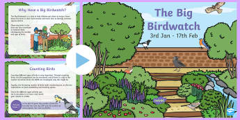 The Big Birdwatch PowerPoint - KS1 & 2  Big Birdwatch (3 Jan-17 Feb 2017), RSPB, school, bird, bird watch, counting birds, bird fee