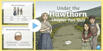 Chapter Two Quiz PowerPoint to Support Teaching on Under the Hawthorn Tree - ROI - Resources to Support The Teaching Of Under the Hawthorn Tree, Under the Hawthorn Tree, Third C