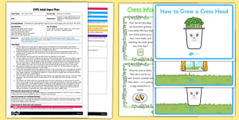 Planting Cress Seeds EYFS Adult Input Plan and Resource Pack
