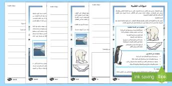 حيوانات قطبية نشاط متمايز للفهم القرائي  - الشتاء، الطقس، حيوانات، علوم، قراءة، قرائي، متمايز، ا