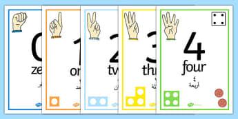 Visual Number Line Posters 1-30 Arabic Translation - arabic, visual, numberline, posters